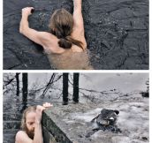 Norwegian man saving a duck