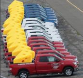 Cheesiest Pick-up Line Ever