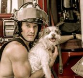"""HOT"" Firefighters With Kittens & Puppies Calendar…"