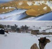 Snow In The Algerian Sahara
