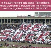Yale Has Funnier People