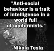 Next Time Someone Calls You Anti-Social, Quote Tesla