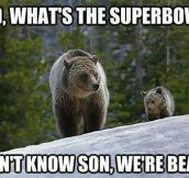 What's The Super Bowl?