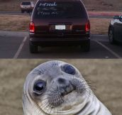 Seal Is Confused