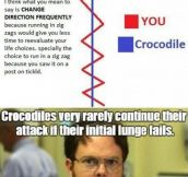 Things You Have To Know If A Crocodile Attacks You