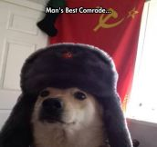 Many Soviet, Such Comrade