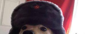 Many Soviet, Such Comrade