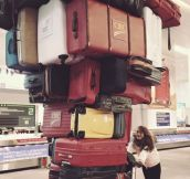 Travelling Light She Said