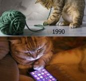 Only 90s Cats Will Understand