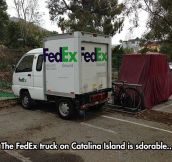 Baby FedEx Truck Spotted In A Parking Lot