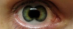 15 Totally Freaky Contact Lenses!!