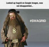 Hagrid Looks Good