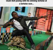 Usain Bolt's Tortoise
