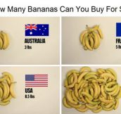 The Price Of Bananas In Different Countries