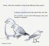 Darwin's Dirty Little Secret