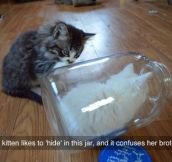 Hiding In The Jar
