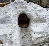 Cool Snow Cave