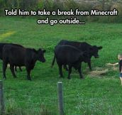 Real Life Minecraft