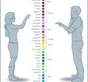 Color Names: Girls Vs Guys