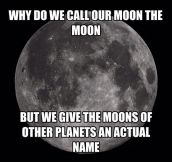 We Should Make A Name For Our Moon