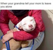 Take That, Mom