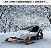 Epic Snowmobile Design
