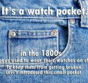 The Little Pocket Explained