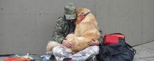 A Dogs Love Is Unconditional… (14 Pics)
