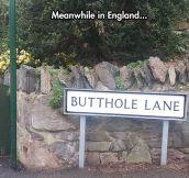 England's Lanes