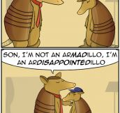 Armadillos Make Dad Jokes Too