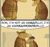 Armadillos Make Dad Jokes Too