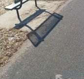 The Bench Of Shame