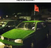 Golf Themed Car