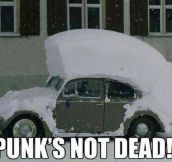 Long Live Punk