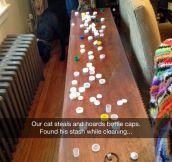 Bottle Cap Hoarder