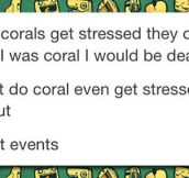 The Life Of Corals Suck