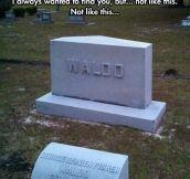 Not Like This, Waldo