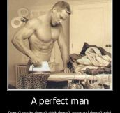 A True Fact About The Perfect Man