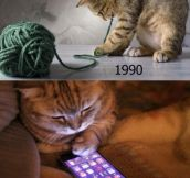 90′s Cats Will Understand