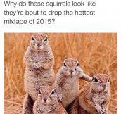 Where Do I Get Their Album?