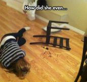 My Cousin, Ashamed After Building A Chair From IKEA