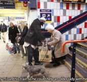 22 Heartwarming and Awesome Random Acts of Kindness