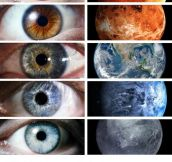 You Can See The Universe