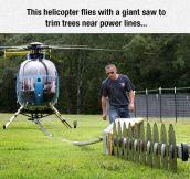 Probably One Of The Most Dangerous Jobs Ever