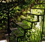 Greenhouse Staircase