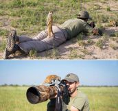 Baby Meerkats Playing With Photographer In Botswana