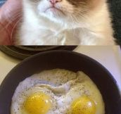 Grumpy Breakfast