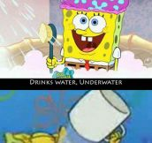 I Just Don't Understand Spongebob