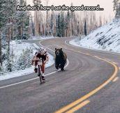 Bear's Fast Food