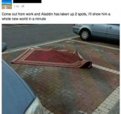 Aladdin Parks Like A Jerk